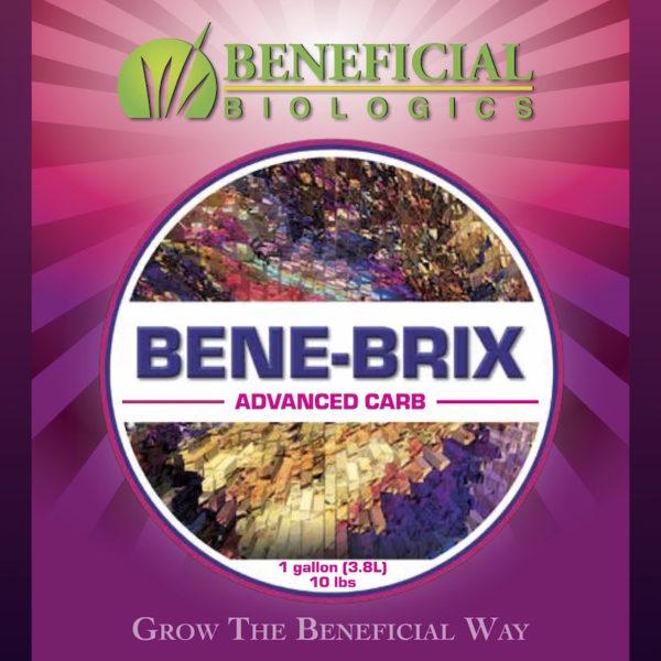 Bene-Brix Advanced Carb